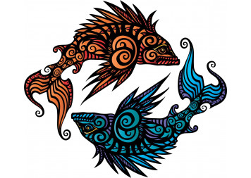 Amazing Fish Wall Decals